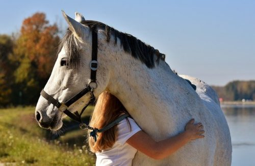 women-and-horse