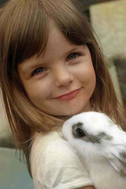 любовь-к-кроликам